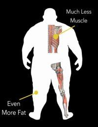 Body Type Three