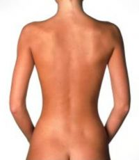 Body Type One Muscle Mass, Posture, Skinny Fat