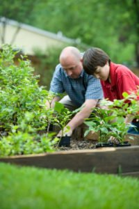 Health & Lifestyle Hobbies - Gardening
