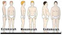Body Type Shape Quiz Calculator Free - The Three Body Types, Endomorph, Ectomorph, Mesomorph